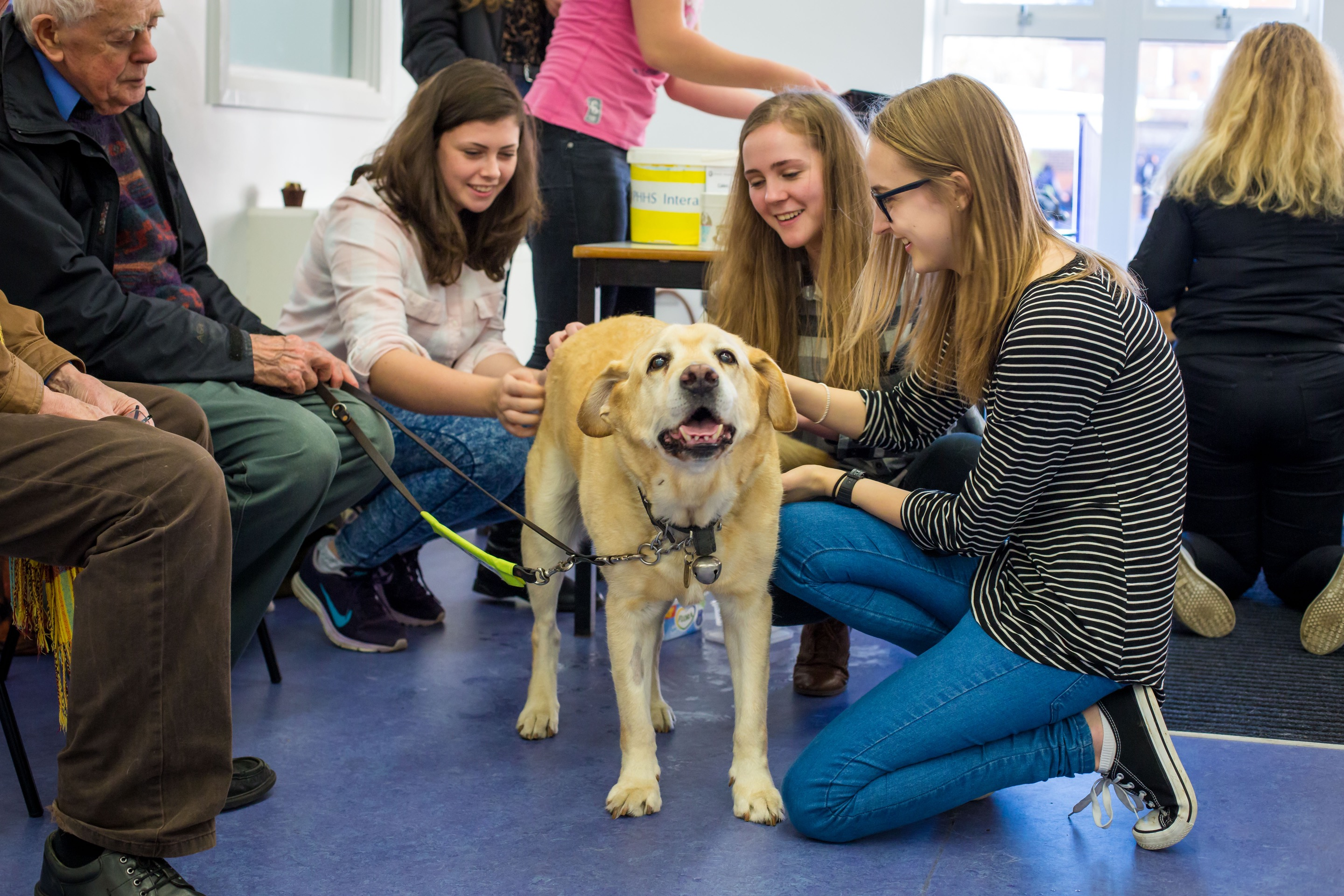 Guide Dogs Uk Media Images